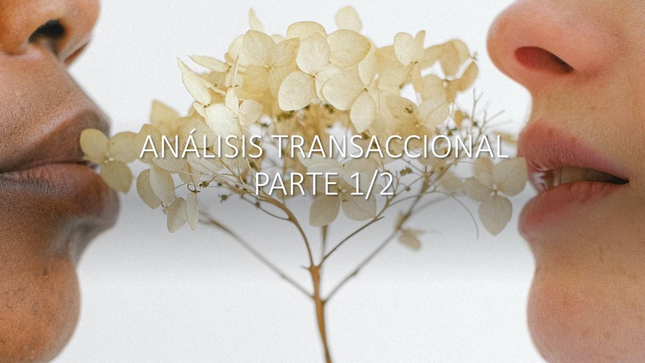 Análisis Transaccional 1