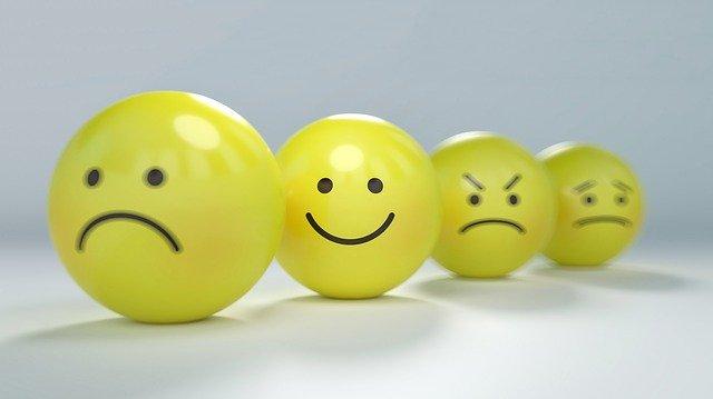 Introducción a la Terapia Focalizada en la Emoción